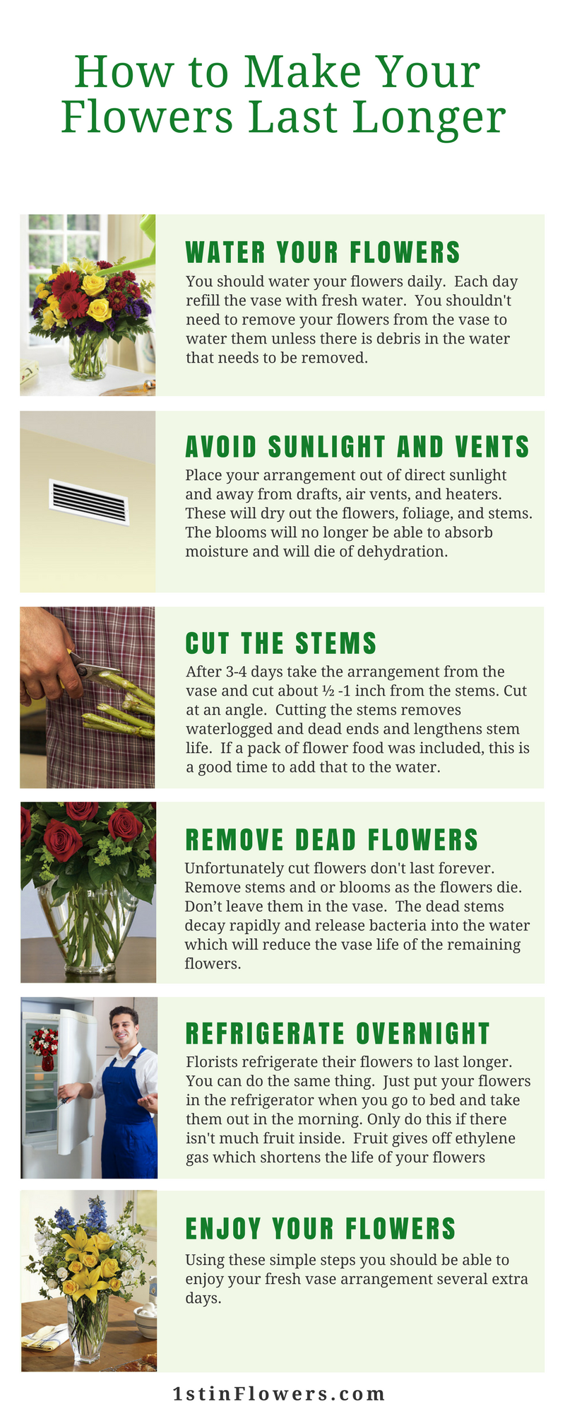 How to make your flowers last longer infographic version of this article izmirmasajfo