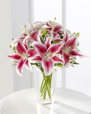 Photos of poisonous plants and flowers for cats the answer is lilies lilies are extremely toxic to cats any part even just a leaf or pollen can cause kidney failure and death mightylinksfo