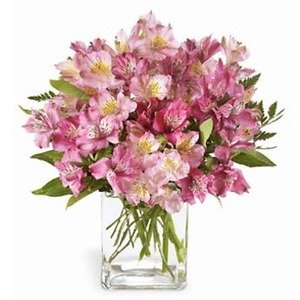 Raleigh nc flower delivery same day 1st in flowers the pink persuasion bouquet mightylinksfo