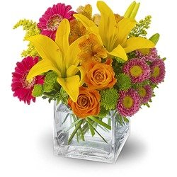 Teleflora's Summertime Splash