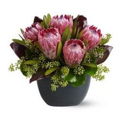 Punta gorda fl flower delivery same day 1st in flowers positively protea mightylinksfo