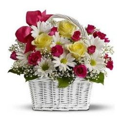 Daisy Dreams Basket