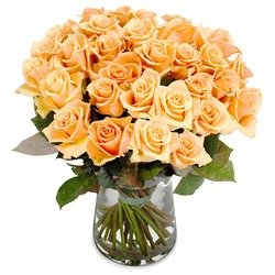 Awesome Apricot Roses (Vase not included)