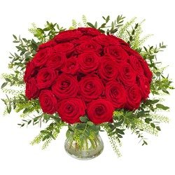 Red roses de luxe (Vase not included)