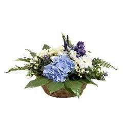"""Forget-me-not"" Arrangement"