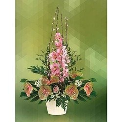 Arrangement of Cymbidium and Anthurium