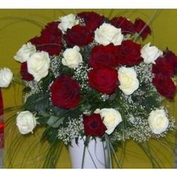 Bouquet of 24 Long Stemmed White and Red Roses (Vase Not Included)