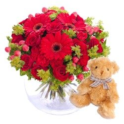 Hug for happiness in red with Teddy bear (Vase not included)