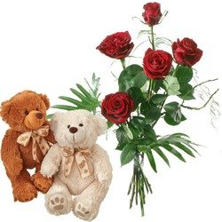 For my little bear with two teddy bears (white & brown)