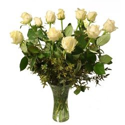 12 White roses (Vase not included)
