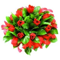 A Bouquet of Tulips with Feathers