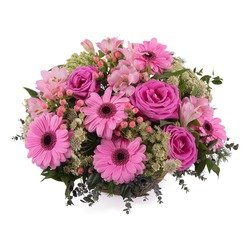 Basket of Pink Gerbera Daisies