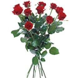 Bouquet with 12 red roses (Vase Not Included)