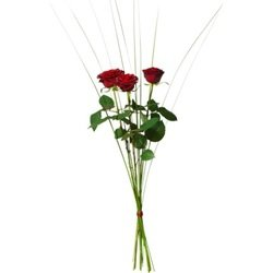 Bouquet with 3 red roses (Vase Not Included)