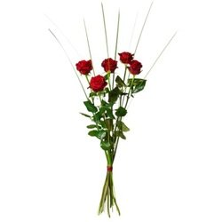 Bouquet of 5 red roses (Vase Not Included)