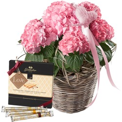 """Hydrangea (pink) with Heart with Gottlieber Hüppen and hanging gift tag """"Love"""""""