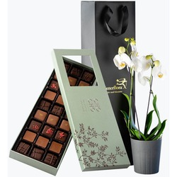 White Elegance with chocolate