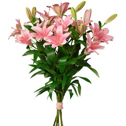 Pink Lilies Bouquet (Vase Not Included)