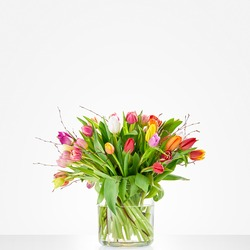 Colourful tulips (Vase not included)