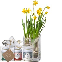 """Spring Greeting (incl. vase) with Gottlieber tea gift set and hanging gift tag """"Thank You"""""""