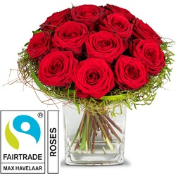 Small Pearl of Roses, with Fairtrade Max Havelaar-Roses