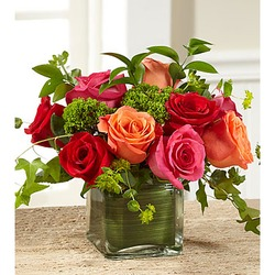 The FTD Lush Life Rose Bouquet