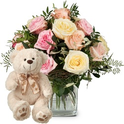 Cordial Rose Greeting with teddy bear (white)