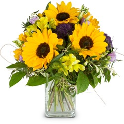 Our sunshine (Vase not included)
