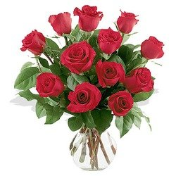One Dozen Red Roses Arranged in Vase