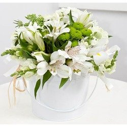 White Dream Bouquet (Container not Included)